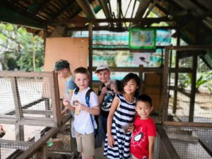 5 Stesp Academy at the Animal Resort